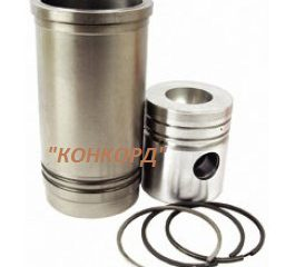 52110099-piston-rings-liner-kit