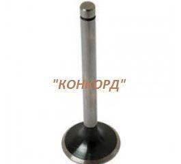 69010555-inlet-valve